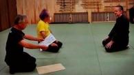 I och med firandet av Bujinkan 40 år i Sverige (och Europa) så håller vi en liten extra träning i vår Dojo kvällen innan lägret. Vi välkomnar alla! FREDAG 16 […]